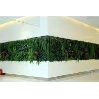 马鞍山仿真植物墙多少钱一平米