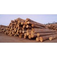 木方 建筑施工专用 使用次数高
