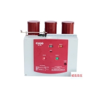VS1-630A高压真空断路器