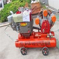 直销防汛抢险打桩机  便携式打桩机 手持式植桩机