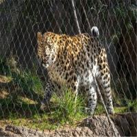 建筑防护装饰用网,动物园专用围栏网,不锈钢防护金属网