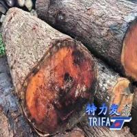 供应桃花芯原木板材料木方料家具料菜板料特力发品牌桃花心