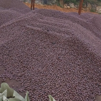 贵阳陶粒,贵州陶粒,贵阳鹅卵石,陶粒