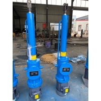 行程1.5米DYTZ1000電液推桿DYTP4000-500