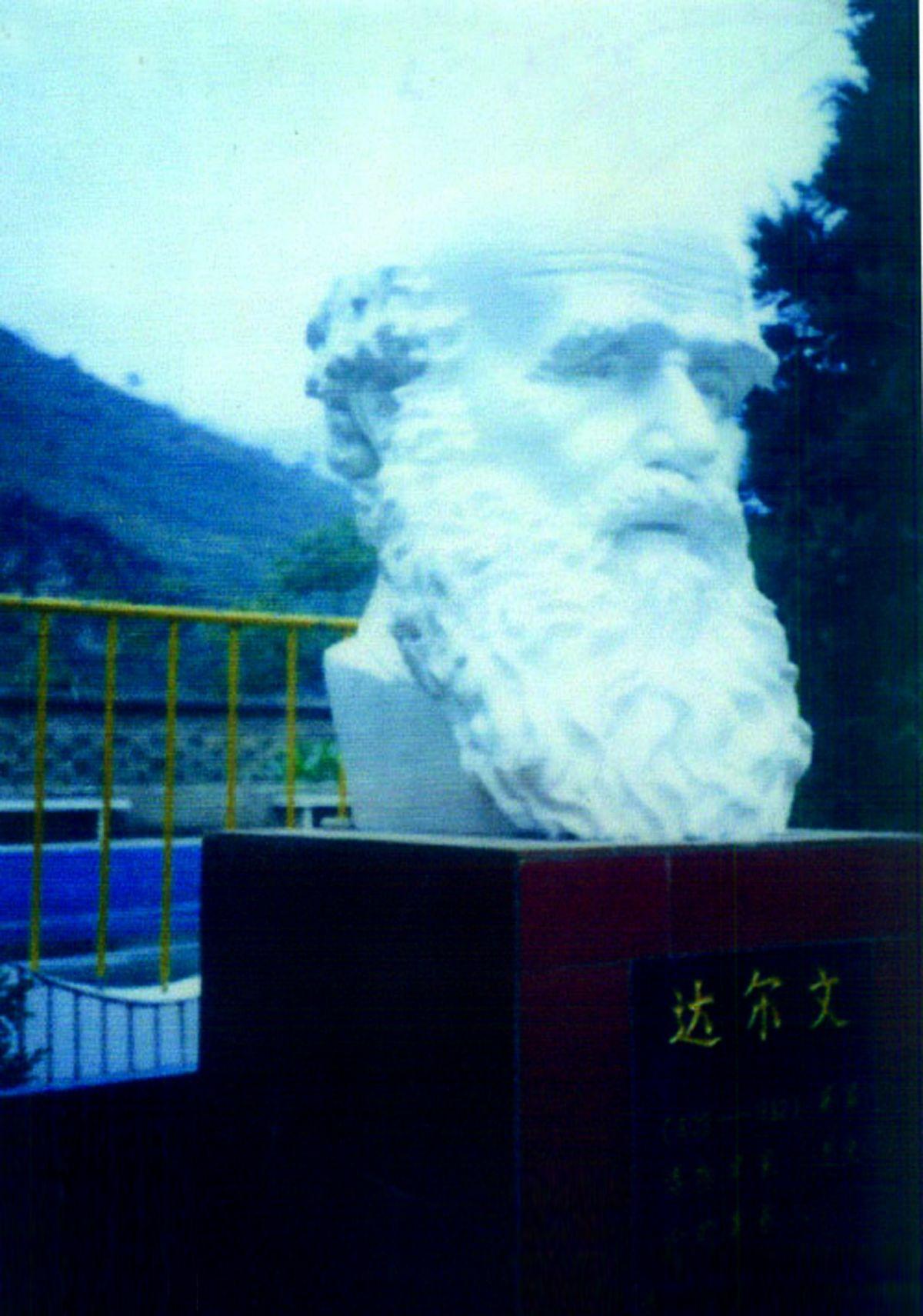 达尔文雕塑/汉白玉雕塑厂家/四川校园雕塑