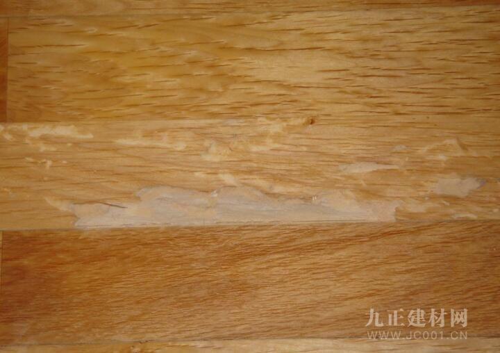 实木家具蛀虫