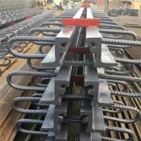伸缩缝为桥梁保驾护航