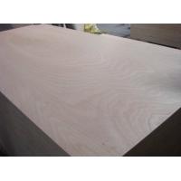 包装板胶合板多层板托盘板 异形板2-25mm 厂家直销 质量