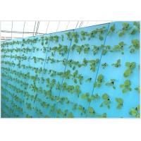 新品无土栽培 气雾栽培挤塑板 水上蔬菜鱼菜共生定植塑料泡沫板