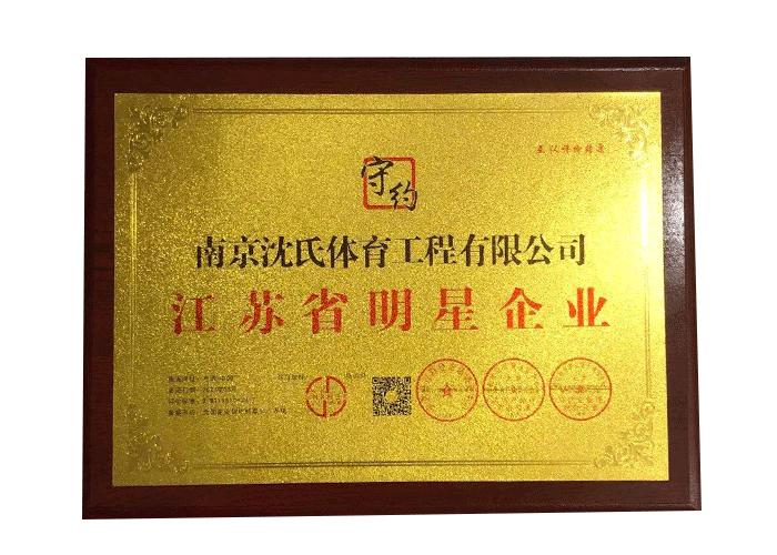 江苏省明星企业