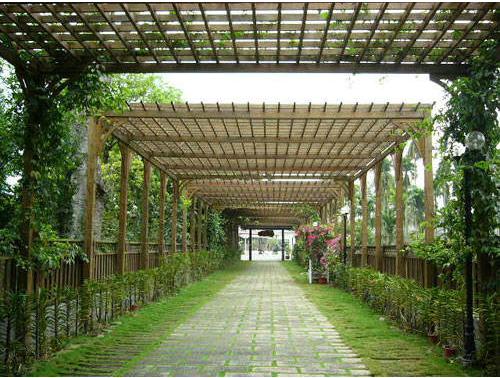 成都廊架,木结构走廊,花架,廊亭,木亭子