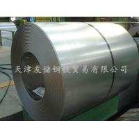 天津低碳冷轧板 天津冷轧板 SPCC DC01 ST12