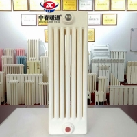 GZ605钢制柱型六柱散热器