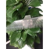 六层U型锁扣阳光板-16毫米四层阳光板-防漏水阳光板