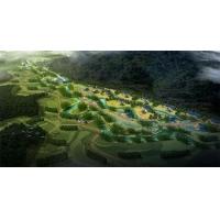 旅游策划规划/特色小镇与美丽乡村