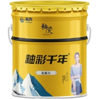 巢典釉瓷水性涂料内墙涂料墙面防污涂料