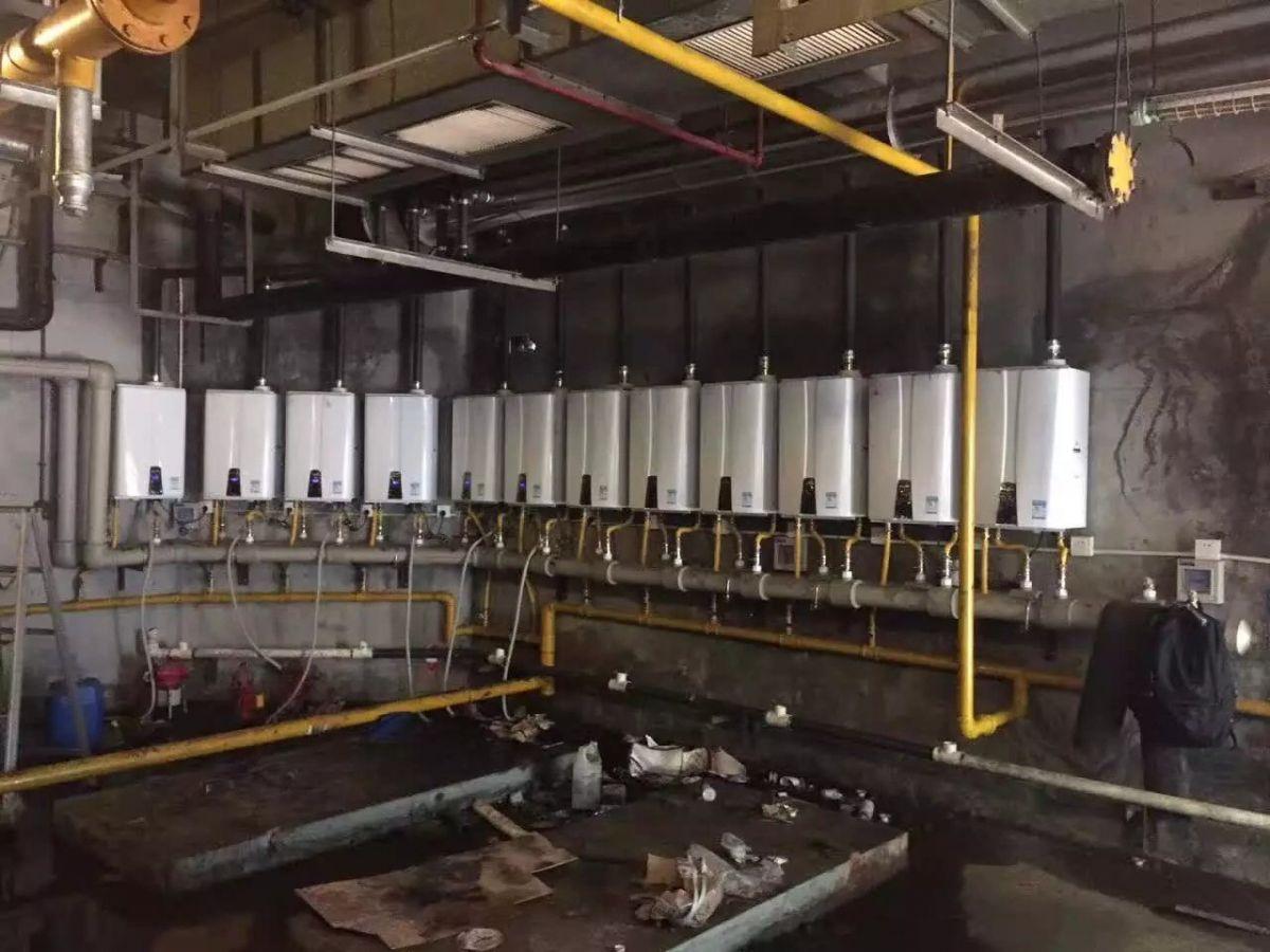 低氮冷凝商业锅炉