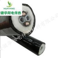 安徽華陽生產恒功率伴熱管線TH2200/2*Φ8