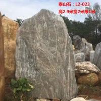 峰景园林供应学校泰山石 刻字泰山石