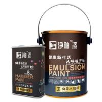 臣工净柚漆净美系列WNM-411纳米薄膜抗菌陶瓷漆5L装水性