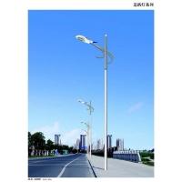 太阳能路灯光伏组件