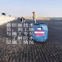 嘉佰丽为您介绍AMP-100桥面防水涂料施工方案