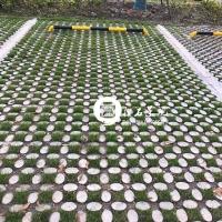 现浇植草地坪 高承载植草地坪模具 承揽植草地坪工程施工