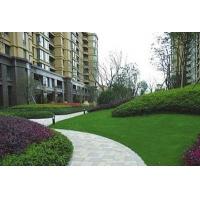 山西晉恒園林景觀工程   草坪綠化