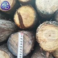 沙杆杉木杆高压线防护杆工程防护杆源头货