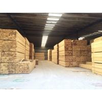 长春建筑木方
