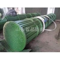 碳四化工换热器防腐LJSY-99