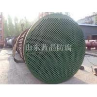 LJ-2000常温固化水冷器防腐