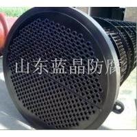 氯碱化工换热器防腐TH-901