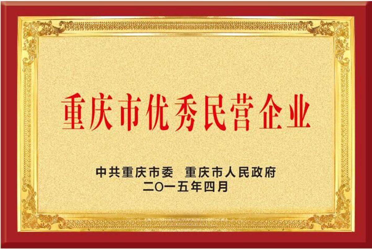重庆市优秀民营企业