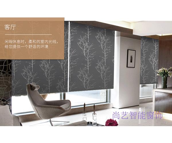 南京智能窗饰-尚艺智能窗饰厂-尚艺印花卷帘