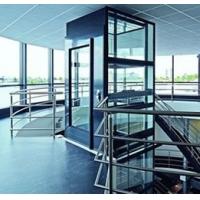 小型观光别墅电梯 中三III型180KG小型螺杆电梯 自带井