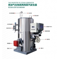 江西0.3吨燃气蒸汽发生器