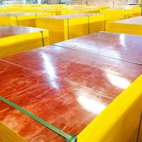 湖南金橋板業供應建筑木模板七層八層九層膠合模板