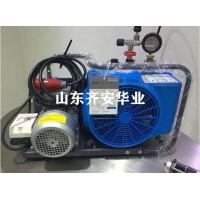 德国宝华充气泵JUNIOR II消防专用配件润滑油空滤
