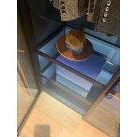 衣帽间 玻璃衣柜 展柜