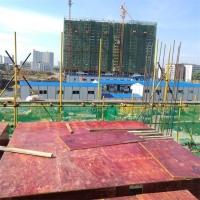 建筑模板 工地混凝土支模用 厚薄均匀 层次分明 厂家批发价格