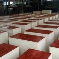 建筑模板木板 工地工程混凝土支模木工板 廠家大量批發