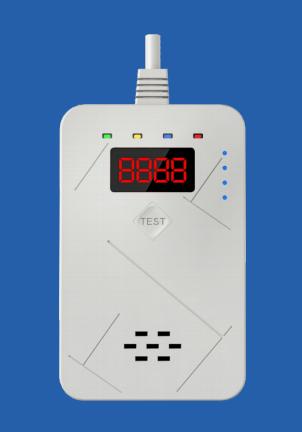 深圳市新國標廠家安泰AT-304型一氧化碳報警器