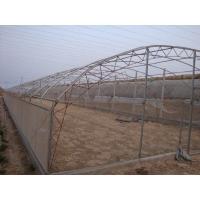 單體拱棚建設過程/單體拱棚承建/單體拱棚