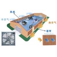 负压风机-钢结构厂房通风降温设备-散热设备