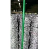 镀锌有刺铁丝网不锈钢刺铁丝圈地铁刺丝现货