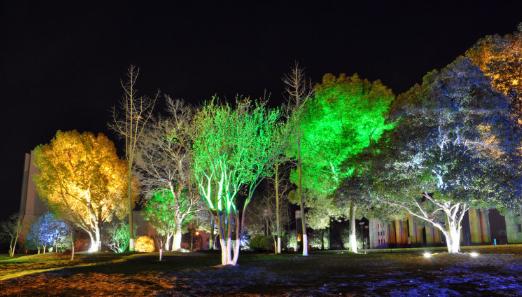 户外工程LED地埋灯 公园广场庭院地面嵌入式1-36W