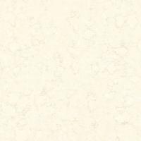 欧神诺 抛光砖 OB00180P