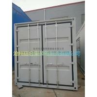 集装箱门定制 保温设备箱门 单开门 对开门