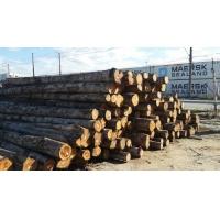 尚高木业:供应巴西柚木,非常珍稀具有收藏保值价值